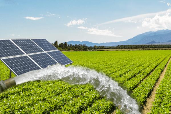 Solar-Water-pump 1 - Copy
